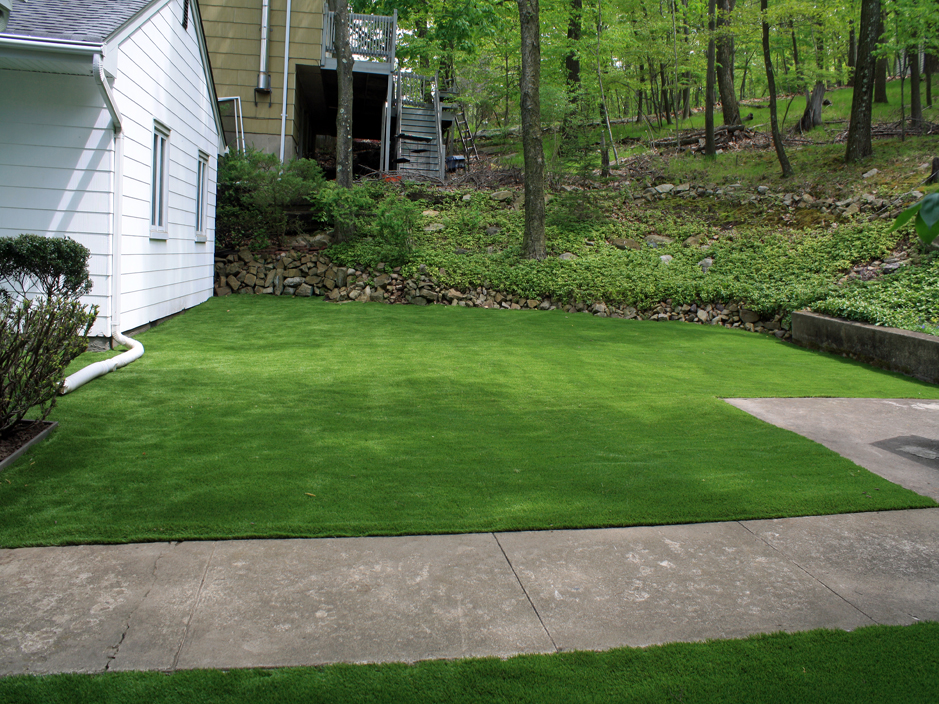 California Landscaping Ideas artificial turf albany, california landscape ideas, front yard