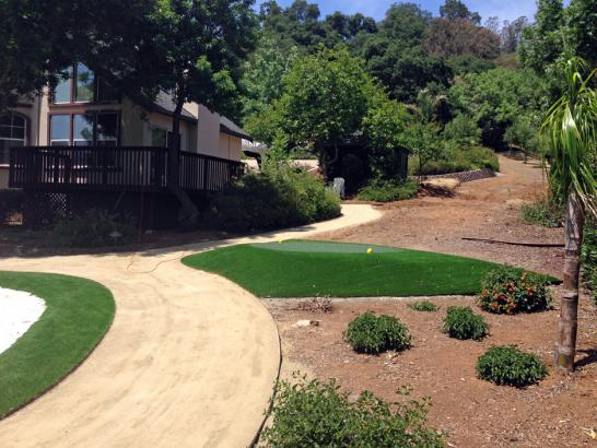 Artificial Grass Photos: Artificial Grass Installation San Andreas, California Indoor Putting Greens, Landscaping Ideas For Front Yard