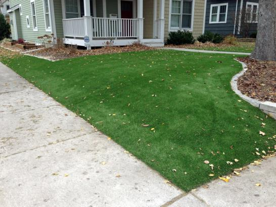 Artificial Grass Photos: Artificial Turf Coulterville, California Backyard Deck Ideas, Front Yard Landscape Ideas