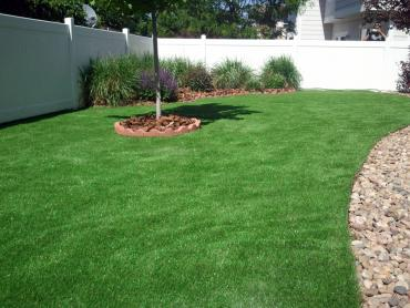 Artificial Turf Installation Nicolaus, California Garden Ideas, Backyard Makeover artificial grass