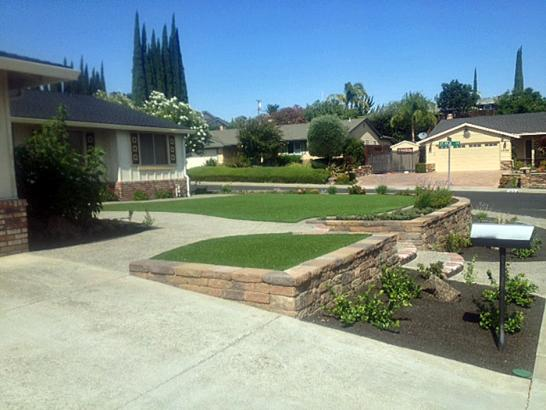 Fake Grass Orangevale, California Garden Ideas, Front Yard Ideas artificial grass