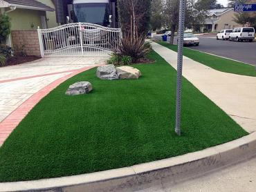 Fake Lawn Emeryville, California City Landscape, Front Yard Landscape Ideas artificial grass