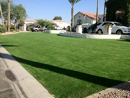 Fake Lawn Pioneer, California Landscape Ideas, Front Yard Ideas artificial grass