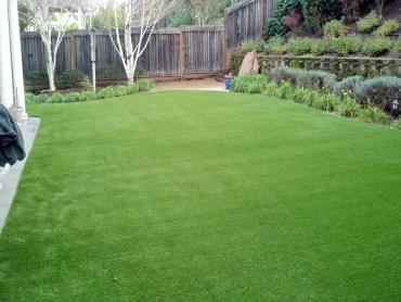 Fake Lawn Santa Rosa, California Garden Ideas, Backyard Makeover artificial grass