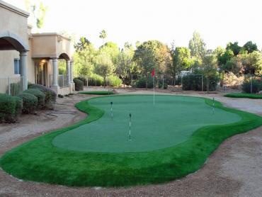 Artificial Grass Photos: Fake Turf Dorrington, California Golf Green, Backyards