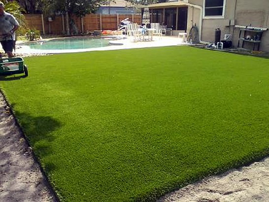 Grass Turf Riverbank, California Landscaping, Backyard Landscape Ideas artificial grass