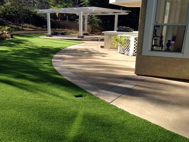 Artificial Grass Photos: Lawn Services Pollock Pines, California Cat Playground, Front Yard Landscaping