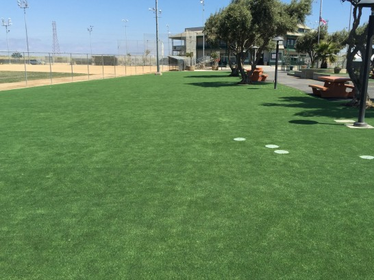 Synthetic Grass San Geronimo, California Lawns, Parks artificial grass