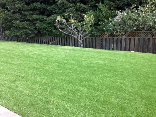 Synthetic Lawn Hopland, California Rooftop, Backyard Design artificial grass