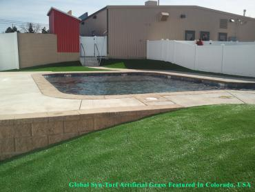 Synthetic Turf Davis, California Gardeners, Above Ground Swimming Pool artificial grass