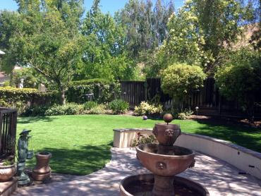 Synthetic Turf Supplier Buena Vista, California Backyard Deck Ideas, Backyard Makeover artificial grass