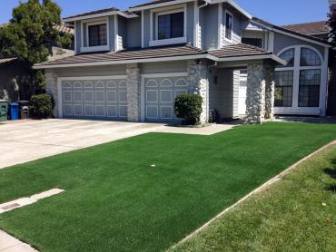 Turf Grass Oakville, California Gardeners, Front Yard Landscape Ideas artificial grass