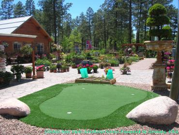 Turf Grass West Sacramento, California Golf Green, Backyard Landscape Ideas artificial grass